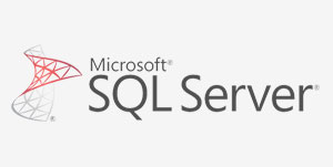 Backup Microsoft SQL with self hosted online server backup platform